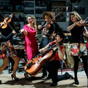 CeMiVet Quartetto Euphoria 0073