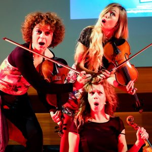 CeMiVet Quartetto Euphoria 0161