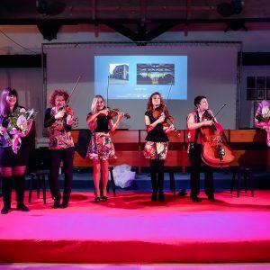 CeMiVet Quartetto Euphoria 0207